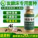 龍南先制作發酵床養肉兔用的菌種廠家批發價格
