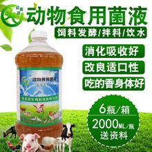 竹鼠養殖喂一些em益生菌對預防拉稀有沒有好處圖片
