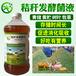 寿宁县靑储发酵靑草喂牛用的发酵剂价格