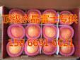 湖南水果产地红富士苹果价格