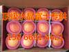 饶阳县苹果产地滞销供应精品红富士苹果