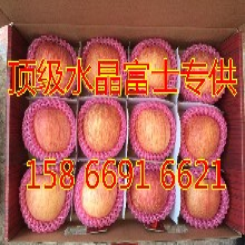 饶阳县苹果产地滞销供应精品红富士苹果图片