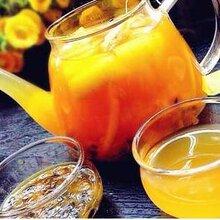 供青海雪梨蜜茶和西宁甘蔗马蹄蜜茶厂家直销