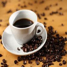 供青海摩卡咖啡和西宁蓝山咖啡哪家好