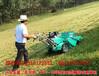 常德去除河堤杂草就用瓦尔特割草机_黄河去除杂草就用自走割草机厂家?