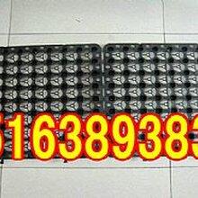 承德拼接式塑料排水板/HDPE滤水板