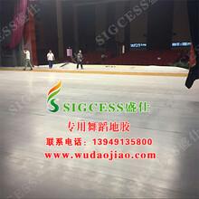 安徽安庆舞蹈地板什么价格图片