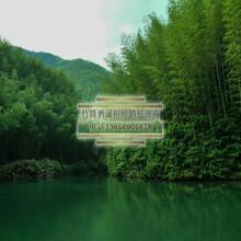 青竹酒代理鲜竹酒厂家招商支持一件代发图片