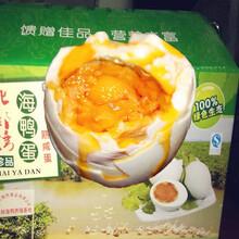 沙菇油蚕香蛋_青岛海鸭蛋促销_重庆海鸭蛋微信图片