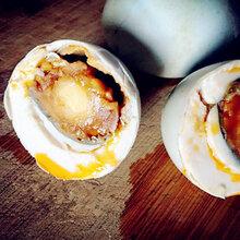 初乳菌嚼劲蛋_吉林海鸭蛋促销_济南海鸭蛋微信图片