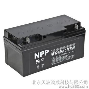 耐普蓄电池