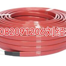 自控温电伴热带_管道加热电伴热电缆控制器图片