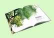 淘宝设计天猫设计网店设计淘宝设计费样本画册设计包装设计