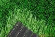 批發人造假草坪北京仿真塑料草坪廠家