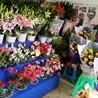 兰州鲜花供货商-仙女居花艺