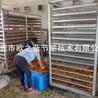 專業水梔子烘干機黃梔子干燥設備中藥材烘干房熱泵干燥窯