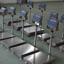 不锈钢防爆电子秤XK3101-EX,60kg防爆电子台秤