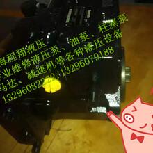 专业维修力士乐A10VG45EZ2DMD液压泵--维修液压泵图片