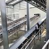 小麦玉米装卸车皮带输送机胶带输送机价格带式输送机供应商