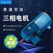 YVF2變頻調速電機YVP-160L-2/級18.5KW三相異步電機馬達銅線380V