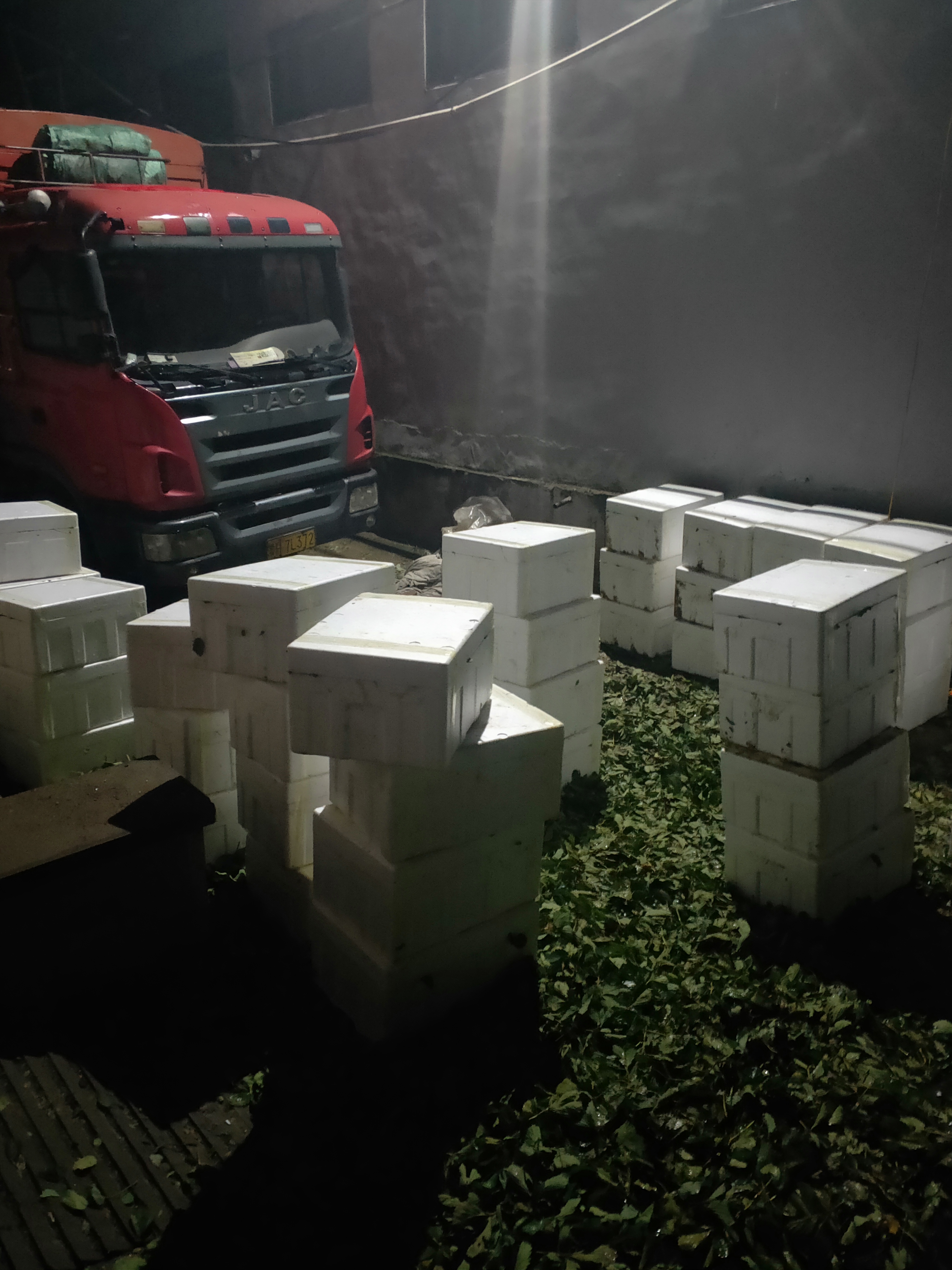 石景山蒙特瑞草莓苗今年价格