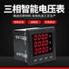 衡陽株洲郴州杭州液晶三相電壓表DY194U-3XY杭州代越牌三相電壓表