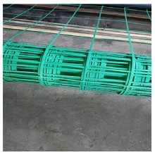 園林綠化用綠色植物攀爬網加鋼絲焊接植物攀爬網綠色鋼塑土工格柵圖片