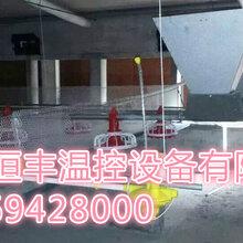 猪舍安装地暖最专业的厂家——山东恒丰温控设备有限公司