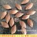 岭南核源橄榄雕刻橄榄核手串原料批发双128折优惠
