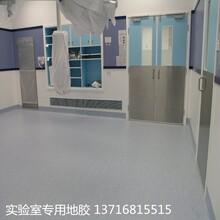 LG实验室地板塑胶PVC地板胶批发图片