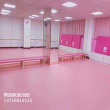 芭蕾练功厅塑胶地板练功房专用舞蹈地板图片