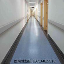 体检中心专业地胶塑胶地板胶安装图片