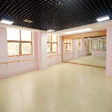 PVC舞蹈形体房地胶舞蹈形体教室地胶图片