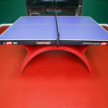 北京乒乓球地板胶乒乓球地板材质图片