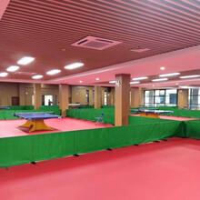 批发运动地板厂家PVC乒乓球地板厂家图片