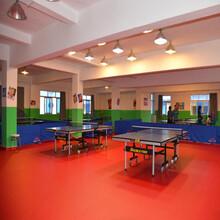 网格纹乒乓球地胶PVC地板胶批发图片