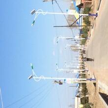 哈尔滨太阳能板,太阳能路灯,庭院灯,草坪灯批发