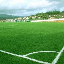人造草皮,运动场人造草皮,足球场人造草皮