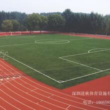 深圳市复合型塑胶跑道材料厂家