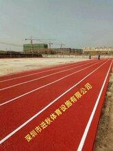 湖南塑胶跑道承包学校田径场跑道透气型跑道造价