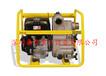 威客诺森PT3A工地污水泵平实价格是您的满意选择