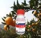 河池果树蔬菜特效杀菌剂,防治溃疡病炭疽病特效药