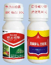 施达优高抗白粉虱专用特效杀虫剂白粉虱管用的杀菌剂图片