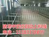 料线设备养殖场设计安装专业厂家