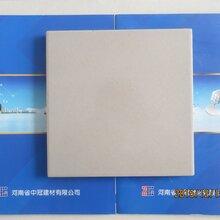 江苏耐酸砖质量标准乳品厂专用耐酸砖图片