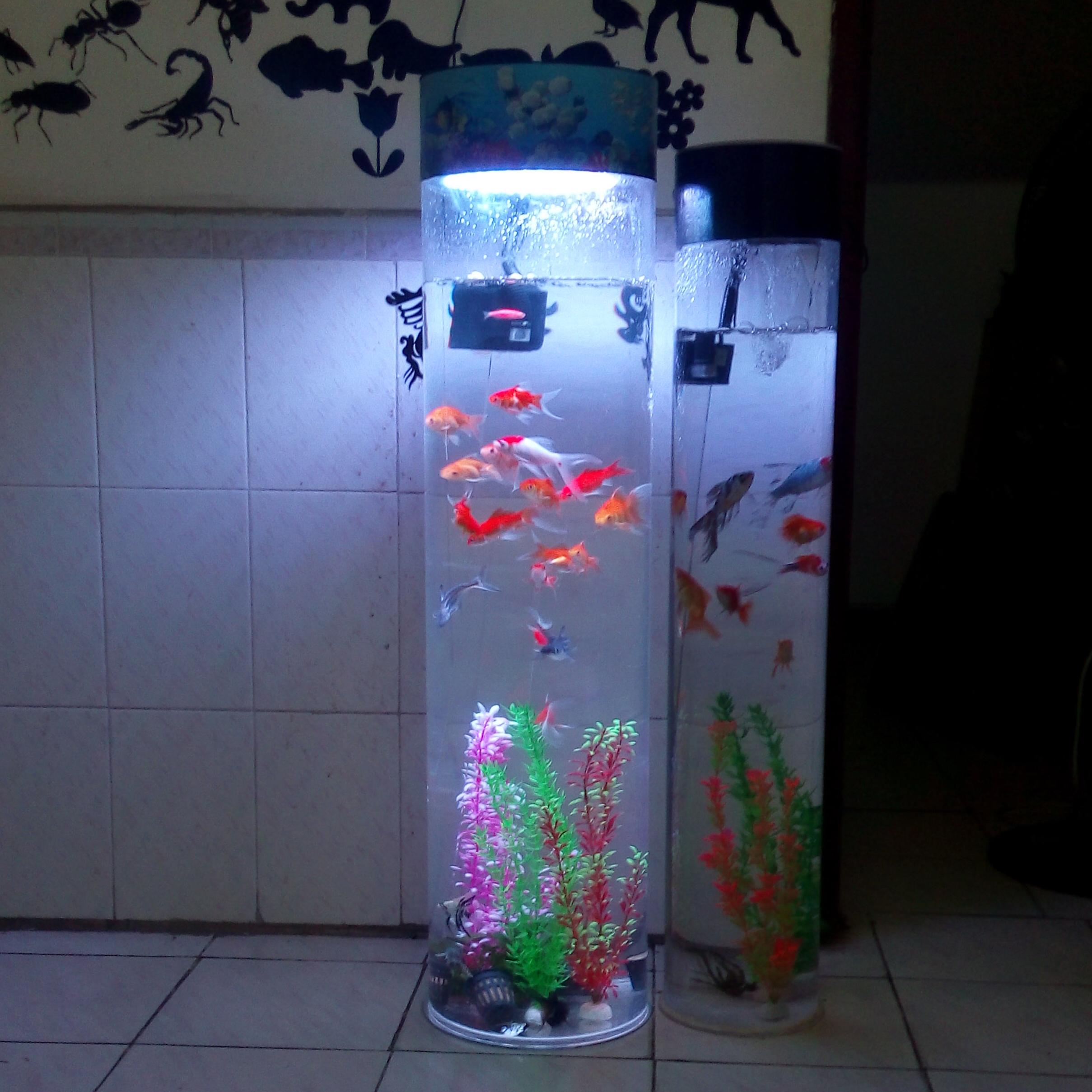 【圆形鱼缸】-圆形鱼缸价格-圆形鱼缸公司