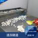 淇县速冻饺子生产线馄饨水饺速冻隧道流水线