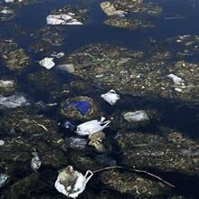 深圳海洋生态环境监测环境污染现状调查服务