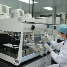 深圳SAG中检联供应食品致病菌检测食品细菌检测服务