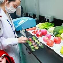 第三方检测机构SAG供应生肉和肉类食品沙门氏菌检测食品